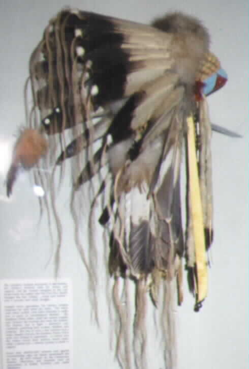 Eagle Feather War Bonnet